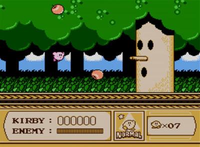 Kirby's Adventure.